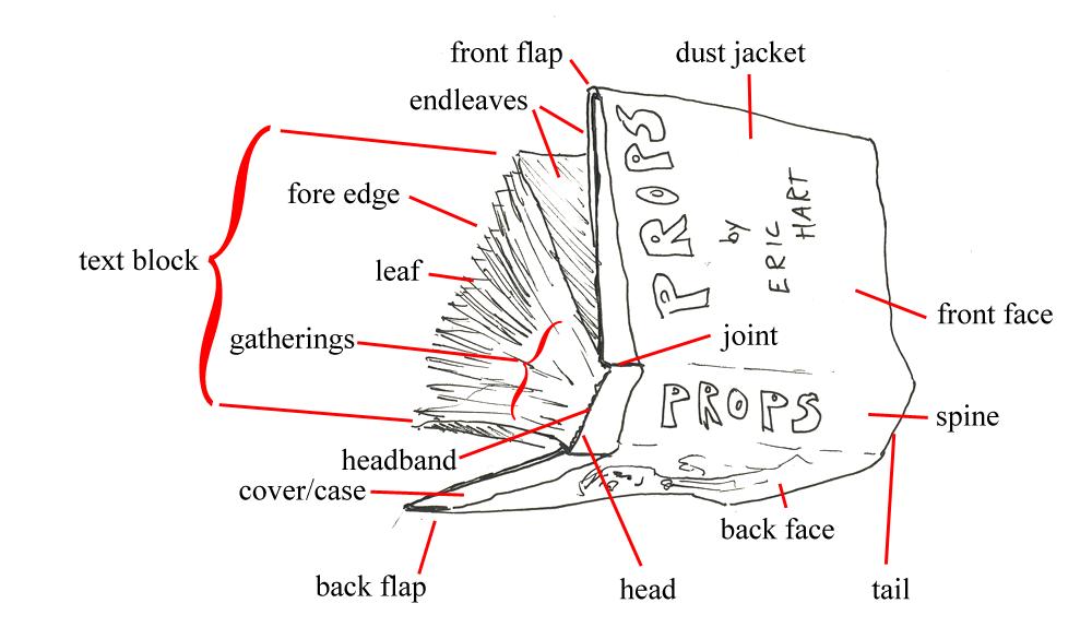 bookparts2?w=350&h=200&crop=1 en) diagram of sunglasses parts with definitions book parts diagram at suagrazia.org