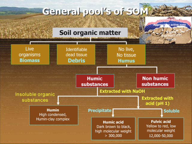 En soil terminology and definitions ohio state for Soil quality pdf