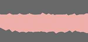 v2-logo-header.png