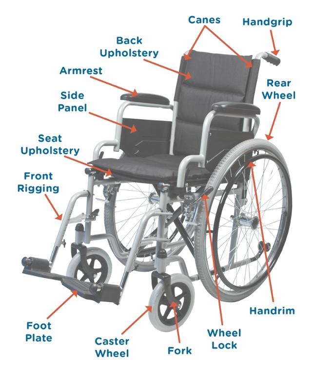 buy popular 6eab9 4d762 Wheelchair-UniversalTerminology.jpg